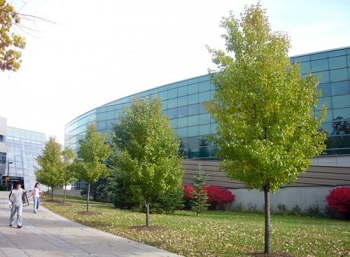 Binghamton-University-SUNY