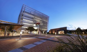 University-of-the-Sunshine-Coast